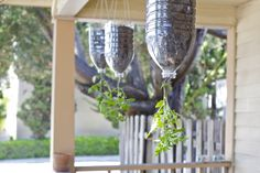 How To Make Inverted Hanging Tomato Planters Out Of Plastic Water Jugs