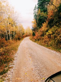 Fall picture I took in Cuba NM, Santa Fe national Forrest. So beautiful