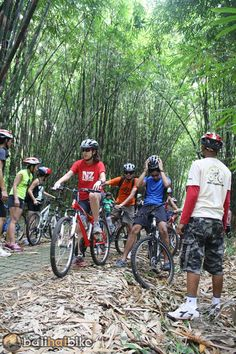 8 Best Ubud Bali Green Countryside Cycling Bike Activity Images