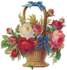 Beautiful basket of roses, with blue ribbon