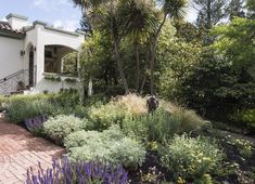 Rather than trying to change the grade of my sloping front garden, I planted perennials and grasses that would accentuate the lay of the land. #gardenista
