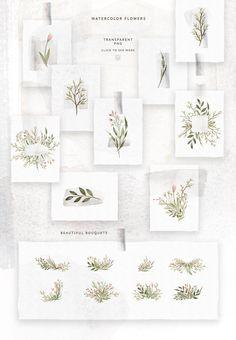 Watercolor Forest Plants by Spasibenko Art on @creativemarket