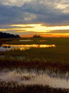 Marsh love