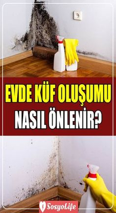 How to prevent mold growth on the walls at home? - How to prevent mold growth on the walls at home? Natural Cleaning Solutions, Natural Cleaning Products, 1000 Life Hacks, Useful Life Hacks, Cleaning Icons, Cleaning Hacks, Diy Home Repair, Home Repairs, Diy Crafts To Sell