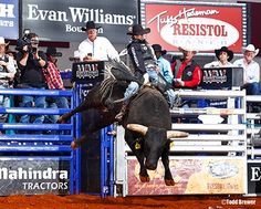 Championship Bull Riding the wildest 8 seconds of your life