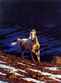 Artist Chris Cummings Wild Horses Picture Approaching Storm-Stallion | WildlifePrints.com
