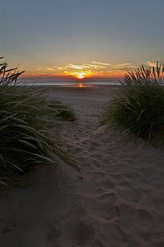 packlight-travelfar:  Sunset in Norfolk by Stephen Walford Photography on Flickr.