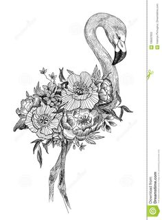 Vector Drawing Bird Flamingo With Blooming Flowers. Tropical Concept Stock Vector - Illustration of decor, flower: 106507933 Art Drawings Sketches Simple, Detailed Drawings, Bird Drawings, Pencil Art Drawings, Colorful Drawings, Animal Drawings, Drawing Birds, Flamingo Art, Flamingo Vector