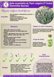 fiche-huile-essentielle-thym