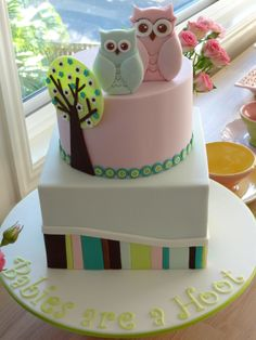 Owl Baby Shower Cake - Covered in fondant with modelling chocolate decorations