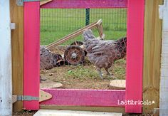 poulailler 26 Hen House, Merry, Matcha, Chicken, Garden, Chicken Coop Decor, Mobile Chicken Coop, Cute Memes, Foxes