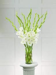 Gladiolus centerpieces -- simple an delegant