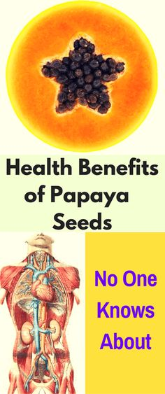 We are all aware of the health benefits the papaya can bring us. But few of us know what the seeds of the papaya can do for us. This is why, in addition, we give you a small list of the most important health benefits you might get from consuming the papaya seeds.   …