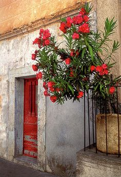 #Red #Door - Provence, France