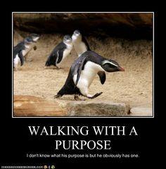 I laughed so hard at this! :')