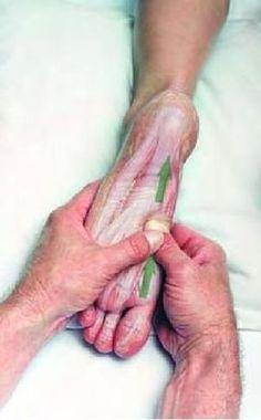 Disfruta el beneficio de los masajes terapéuticos. Recomendado acompañar con aceites esenciales: relajantes, calmantes…. Basic Clinical Massage Therapy by raquel