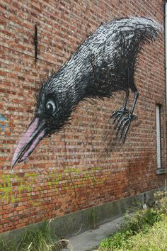 photo i took in doel of street art by ROA