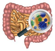 Jak antybiotyki wpływają na Twoje jelita