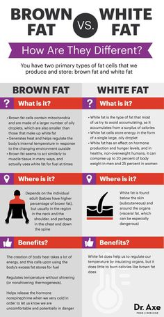 Brown fat vs white fat - Dr. Axe