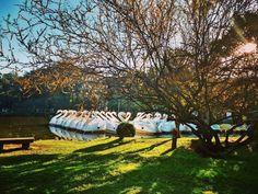 O Parque Farroupilha mais conhecido como Parque da Redenção ou simplesmente Redenção é o parque mais tradicional de Porto Alegre. Esse clique lindo é da @nathalliabarbos. Tem alguma foto tao bonita quanto essa do Redenção? Marque com #CatracaPOA e #ViNoCatraca!