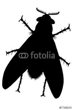 """NEU: Lizenzfreien Vektor """"Fly one black (Fliege eins schwarz) XXL oder V herunterladen und damit z.B. das perfekte individuelle Poster gestalten. Stöbere in der Bilddatenbank https://de.fotolia.com/partner/200576682  und finde weitere TOP -  Stockbilder zur Umsetzung deiner Ideen."""