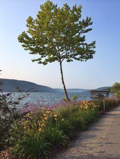 23 best cabins cottages for sale images cabins cottages stone rh pinterest com