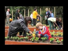 A Single Root Trailer Growing Vegetables, Raised Beds, Vegetable Garden, Documentaries, Home And Garden, History, Spaces, House, Historia