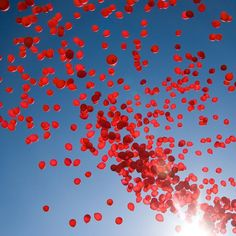 99 red balloon balloons fly high blue sky magic wish hope song Denmark Odensa FOA world intense people of Burma demonstration strike bright clear background