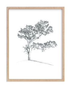 """Simple Tree in Pencil"" - Art Print by Monica Bergler in beautiful frame options and a variety of sizes."