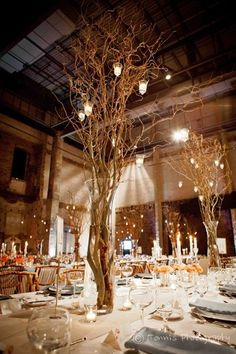 Tree center pieces at Aria! That's our venue! And with some orange too!!