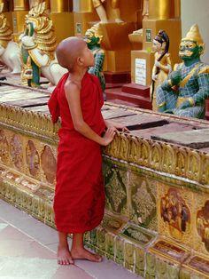 Yangon Monk, Burma