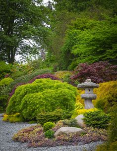 """Three Asian-inspired island gardens (""""Life,"""" """"Harmony"""" and """"Serenity"""") are planted in drought-tolerant sedums, grasses and conifers on the site of the old driveway. A stone lantern and backdrop of Japanese maples add to the effect."""