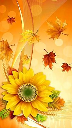 Solve Colors jigsaw puzzle online with 112 pieces Iphone Wallpaper Herbst, Fall Wallpaper, Colorful Wallpaper, Flower Wallpaper, Screen Wallpaper, Wallpaper Telephone, Cellphone Wallpaper, Flower Backgrounds, Wallpaper Backgrounds
