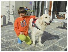 IL MIGLIORE AMICO DELL'UOMO Layla, il cane che 'abbaia' al... diabete La piccola Enya con la sua protettrice a 4 zampe Layla è una dolcissima rappresentante della razza dei Golden Retriever, con qualità eccezionali, apprese durante un corso svoltosi nel Locarnese. È il primo cane per diabetici del Ticino e appartiene a Barbara Bonetti e alla figlia Enya, bambina diabetica. Ha superato l'esame finale, con pieno successo, lo scorso 15 marzo. «Il cane d'allerta per diabetici è un cane…