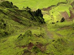 Looking down the slopes of Mt. Hatta in S-Iceland Douglas Fir, Iceland, Country Roads, Mountains, Architecture, World, Places, Green, Nature