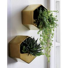Angled stoneware floats your favorite greens at unexpected heights. Shiny gold shape makes a statement in multiples. Suspend from the wall for freestand. Perfect for airplants. Gold Wall Decor, Modern Wall Sconces, Gold Walls, Crate And Barrel, Decoration, Flower Arrangements, Bedroom Decor, Wall Vases, Outdoor Decor