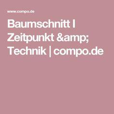 Baumschnitt I Zeitpunkt & Technik  | compo.de