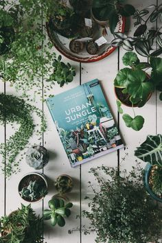 The Urban Jungle by the Urban Jungle Bloggers is a book packed with green inspiration, plant styling ideas and handy plant information for all of you who want to bring more green into your homes and daily lives.