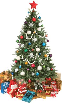 Wallhogs Christmas Tree Cutout Wall Decal Size: H x W Christmas Sweets, Christmas Cooking, Christmas Decorations, Christmas Recipes, Christmas Countdown, Christmas Holidays, Money Origami, Xmas Dinner, And Just Like That