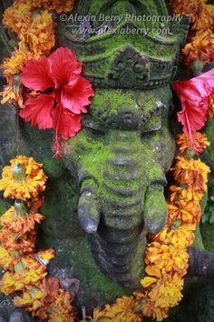 Festive Ganesh, Bali