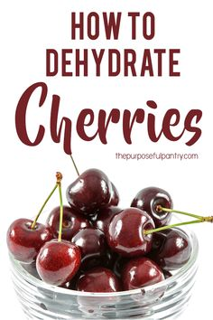Learn how to preserve the fresh taste of cherries to use all year long in trail mix, yogurt, snacks and to put by in your Purposeful Pantry. Learning to dehydrate cherries is easy and just takes a little while. Emergency Food, Survival Food, Canning Recipes, Canning Tips, Jar Recipes, Freezer Recipes, Freezer Cooking, Drink Recipes, Cooker Recipes