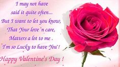 you are my love - happy valentine day