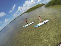 Otherside Boardsports will guide you to the most scenic and calmest waters in the Florida Keys Florida Bay, Vip Card, Kayak Paddle, Paddle Boarding, Snorkeling, Kayaking, Surfboard, Beach Mat, Ocean