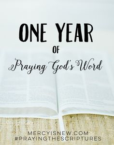"""Thank you so much for subscribing to His Mercy is New by email. As a small """"thank you"""" I have put together a file of all 12 months of Praying the Scriptures! {Note: I did not do any extra formatting or editing! There will be a prettier version of all 12 months coming very soon …"""