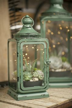 succulents planted in a bowl then placed inside a lantern with fairy lights