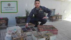 Offerte di lavoro Palermo  Operazione al mercato rionale di piazza del Popolo che si svolge ogni domenica  #annuncio #pagato #jobs #Italia #Sicilia Messina: sequestrati 80 uccelli di specie protette