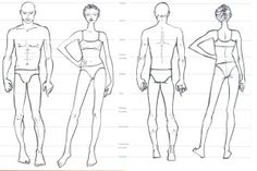 Proporcoes do corpo humano idealizado