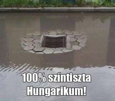ugyanúgy, mint az aszfaltból 3 cm-re kiálló csatornafedelek :-/ Funny Images, Funny Photos, Hahaha Hahaha, Bad Memes, Funny Pins, Funny Comics, Funny Moments, Laughter, Have Fun