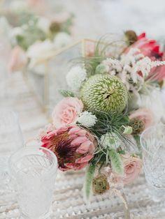 Protea arrangements