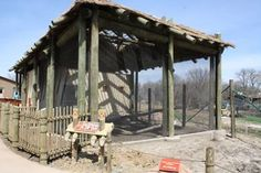 Aviary and kori bustard yard Gazebo, Pergola, Behind The Scenes, Connection, Africa, Yard, Outdoor Structures, Kiosk, Patio